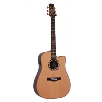 Morgan W 309 SCE akustisk gitar, matt natur